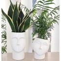 Vases tête décorative
