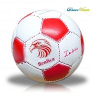 Pelota del Benfica alcancía